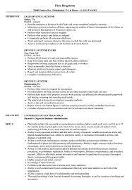 Revenue Auditor Resume Samples Velvet Jobs