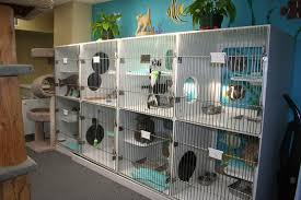 garden grove pet hospital. Unique Animal Hospital Garden Grove With About Friends Pet Hotel Grooming Pets Home Away From