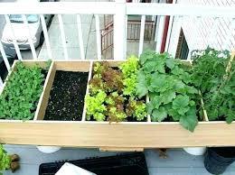 patio herb garden herb garden apartment patio herb garden ideas deck garden ideas sweet looking apartment