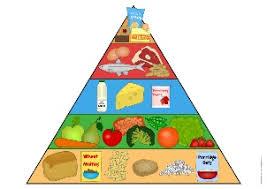 Image result for food groups ks1 display