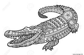Coloriage Difficile Zentangle Crocodile Adulte Crocodile Dessin