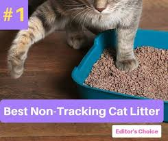 Cat Litter Comparison Chart Best Non Tracking Cat Litter In 2019 Catthink