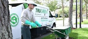 tru green chem lawn trugreen chemlawn albuquerque trugreen chemlawn reviews tru green chem lawn