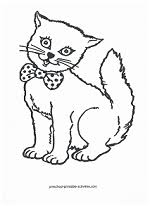 Small Picture Cat Coloring Pages