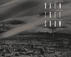 Vinyl reissue of <b>Rain Tree Crow</b>: The return of a masterpiece