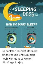 Dog Sleep Pattern Magnificent Let SLEEPING DOGS HOW DO DOGS SLEEP Humans Typically Follow A DOGS