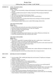 Vba Developer Resume Sample Excel VBA Developer Resume Samples Velvet Jobs 2