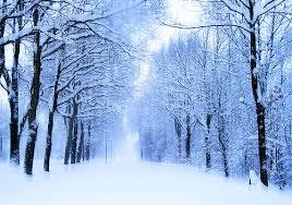 Αποτέλεσμα εικόνας για winter