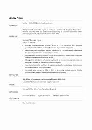 New Cashier Resume Sample Pdf Margorochelle Com