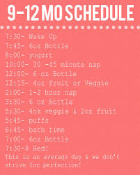 9 12 Month Baby Schedule Baby Schedule Baby Food Schedule
