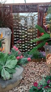 Small Picture 20 best Indigenous gardening in South Africa images on Pinterest