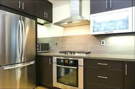 Houzz Kitchen Ideas Unique Design Inspiration