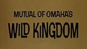 Wild Kingdom TV - Home | Facebook