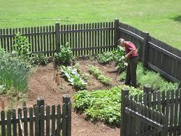 Kitchen Garden Produce Community Involvement New Hanover Historical Society