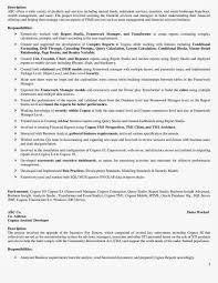 Cognos Developer Resume Resume For Your Job Application