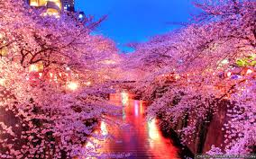 Wallpaper Japan High Quality Photos Of Japan In Best