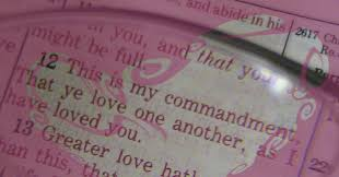 Bible Quotes Of Love Beauteous Love One Another Bible Verses And Life Application