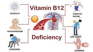 Stichting, b 12, tekort, informatie over een Vitamine, b 12, tekort