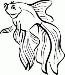 Small Picture ocean life coloring pages Google Search colouring pages