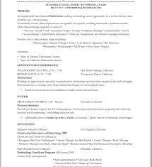 Esthetician Resume Samples Itemized Bill Template