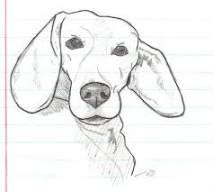 Mijn Hond Lucky Kleurplaat Gratis Kleurplaten Printen