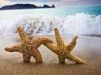 Творческий отпуск в году для педагогов порядок  предоставление отпуска авансом