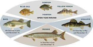 Fishing Rice Lake Info