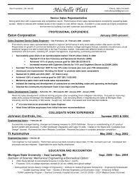 Sample Resume Entry Level Sales Position