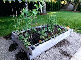 raised garden bed photo 7 of cinder block vegetable on concrete out blocks g
