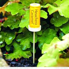 garden plant markers ideas best plant labels ideas on plant markers garden labels and vegetable garden markers garden of eden