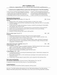 Fashion Business Plan Sample Beautiful Elegant Merchandiser Resume