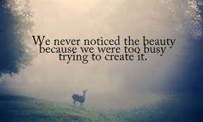 Quote On Beauty Of Nature Best of Pin By Mariam On Mine Pinterest Nature Quotes Buddha Quote And