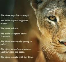 lioness and cubs quotes.  And Lioness And Cubs Quotes  Photo25 Intended And Cubs Quotes
