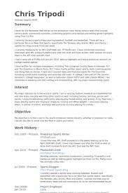 Sample Freelance Writer Resume Freelance Writer Resume Web Writer