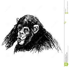 эскиз руки молодого шимпанзе иллюстрация вектора иллюстрации