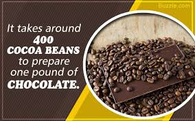 Chocolate Substitution Chart Quick Fix Substitutes For Cocoa Powder That Are Surely