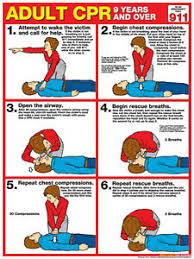 Details About Adult Cpr First Aid Instructional Wall Chart Poster Arc Aha Guidelines