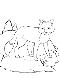 Winter Animal Coloring Pages - GetColoringPages.com