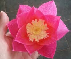 Paper Lotus Flower Paper Lotus Flower Collection Of The Best Handmade Diy