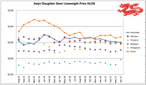Se Asia Report Downward Pressure On Northern Cattle Prices