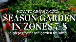 to grow a cool season garden in zones 7