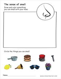 in addition  together with Science Worksheets for Kindergarten   A Wellspring of Worksheets furthermore  moreover The 5 Senses Worksheets   Free Printables   Education in addition Best 25  Five senses worksheet ideas on Pinterest   5 senses in addition 73 Free Resources   Activities for Teaching the 5 Senses furthermore Sense of Sight   Worksheets  Articles and School likewise  furthermore  additionally Beginning Science Unit about Your Five Senses. on sense smell worksheets for preschool