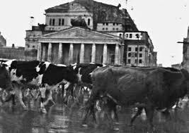 Диссертация по эвакуации в годы Великой Отечественной войны  Диссертация по эвакуации в годы Великой Отечественной войны