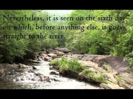 St Francis Quotes Inspiration Quote Of The Day St Francis De Sales YouTube