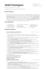 Engineering Resume Fascinating Director Of Engineering Resume Samples VisualCV Resume Samples