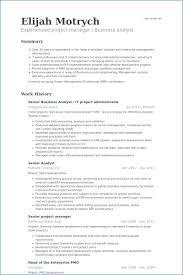 Project Portfolio Manager Resume Bestresumeideas Com