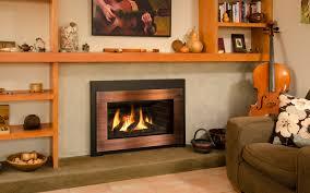 HomestoreValor Fireplace Inserts