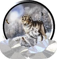 """Résultat de recherche d'images pour """"gifs loup en forêt"""""""
