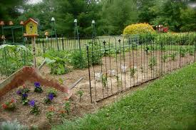 how to keep dog out of flower beds how to keep cats out of my flower bed fence to keep dogs out of flower beds noten animals