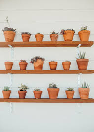easy diy plant shelving for a small garden or succulents with clay pots and a boho